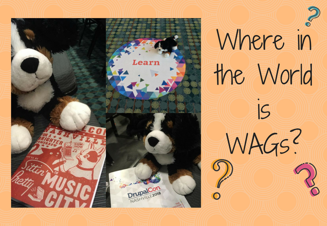 WAGs at Drupal Con 2018